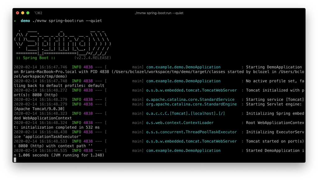 The terminal outputting various log statements as our Spring Boot application starts up.